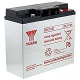 Powery YUASA Batería Plomo NP17-12I VDS Compatible con Hawker Enersys Genesis NP18-12R