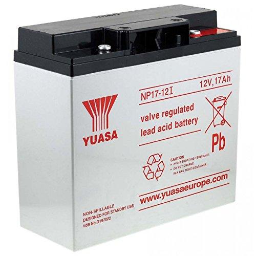 YUASA Batería de Plomo-ácido NP17-12I Vds