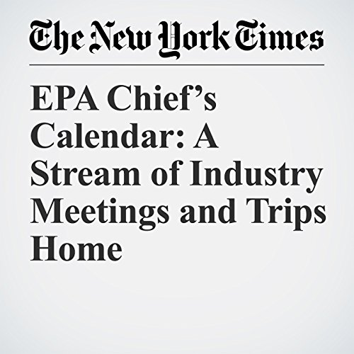 EPA Chief's Calendar: A Stream of Industry Meetings and Trips Home copertina