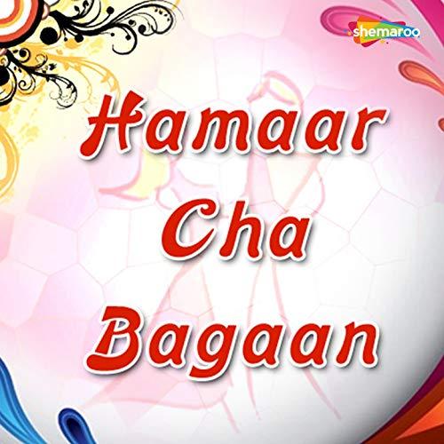 Hamaar Cha Bagaan