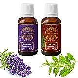 Exotic Aromas Lavender & Tea Tree Essential Oil, Pure and Organic, 15 ml