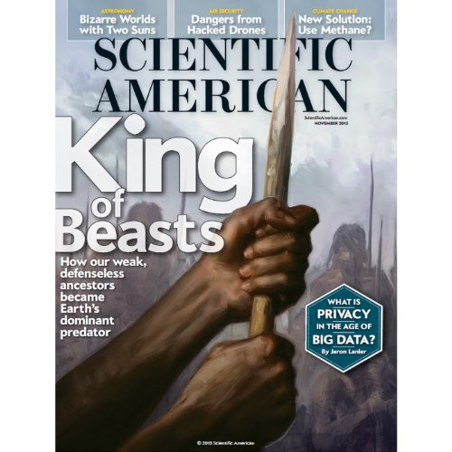 Scientific American, November 2013 cover art
