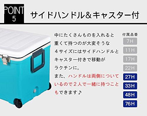 伸和(SHINWA)ホリデーランドクーラー48H48Hホワイト