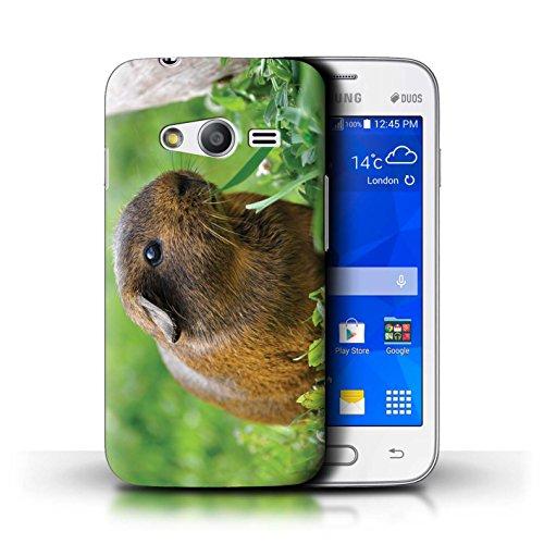 eSwish Carcasa/Funda Dura para el Samsung Galaxy Trend 2 Lite/G318 / Serie: Lindos Animales de Compañía - Conejillo de Indias
