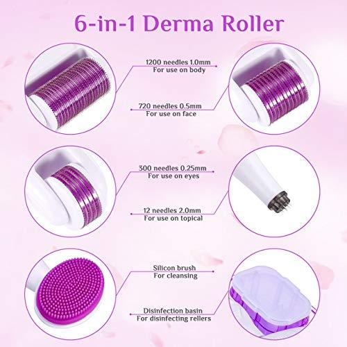 Winpok Dermaroller, 6 in 1 Derma Roller Kit, 12/300/ 720/1200 Aghi, Cura della Pelle Professionale Set di Strumenti di Bellezza, antietà e smagliature (viola)
