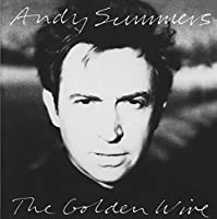 Golden Wire by ANDY SUMMERS