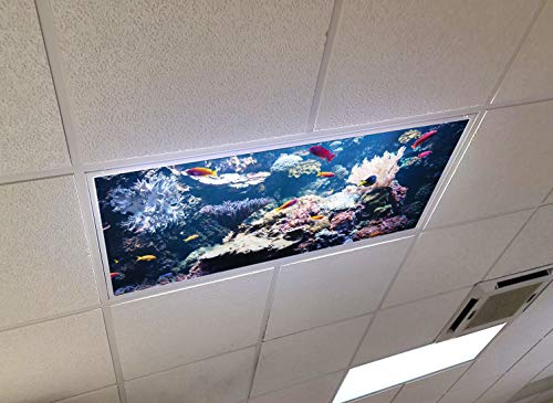 Deep Sea Coral - 2ft x 4ft Drop Ceiling Fluorescent Decorative Ceiling Light Skylight Film Filter Cover