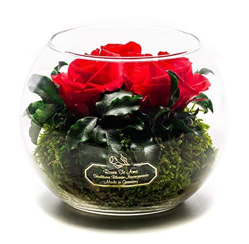 Rosen-Te-Amo Stylischer Blumenstrauß aus 3 konservierte rote Rosen in Kugel-Vase; Infinity Rosen im Glass: handgefertigt aus 100% echten Dekorativen-Pflanzen und Moose - haltbar ohne Wasser