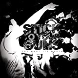 Songtexte von Stick to Your Guns - For What It's Worth