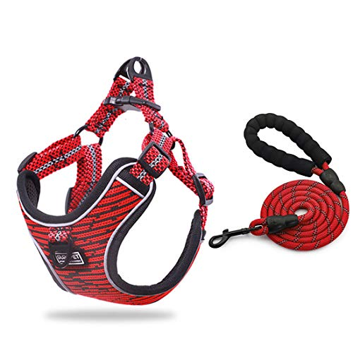 SUNGROO Dog Harness Lead Set, Soft Mesh Fabric,Adjustable Pet Vest for Medium Dogs,for Small Dog,Reflective Lead Comfortable Dog Harness,Harness Lead Set for Cats with Leash (red, S)