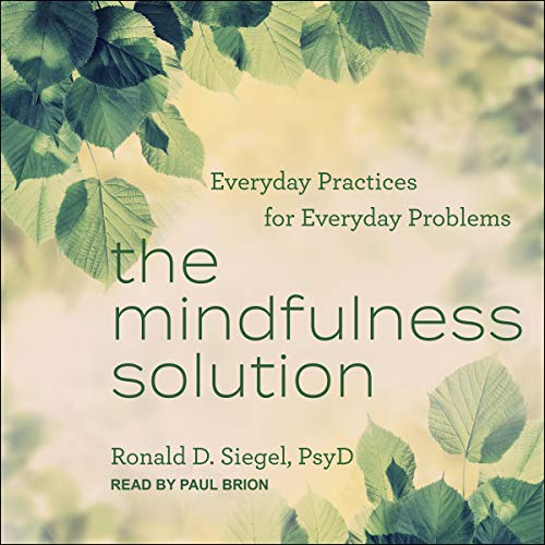 The Mindfulness Solution cover art