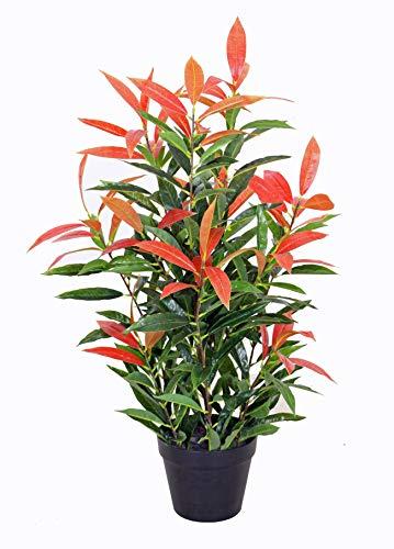 yanka-style Künstliche Glanzmispel PHOTINIA mit Topf ca. 80 cm hoch Kunstpflanze künstliche Pflanze Kunstbaum Baum Bäumchen Blume Deko Dekoration Geschenk (JWS2641)