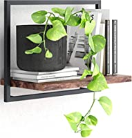 Levitate Book Shelf - Floating Shelves Easy Hanging - for Wall, Bedroom, Bathroom - Rustic - Wide (A)