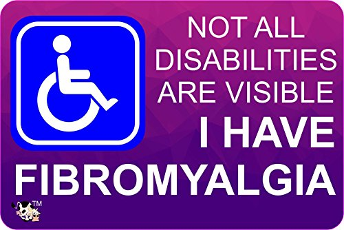 The Lazy Cow disability Invisible illness BUMPER STICKER fibromyalgia - stop other judging you A6 size