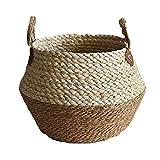 RAILONCH Cesto para la colada, de junco marino, de tejido natural, con asa, para habitación infantil, salón, baño, cesta de almacenamiento (29 x 30 cm)