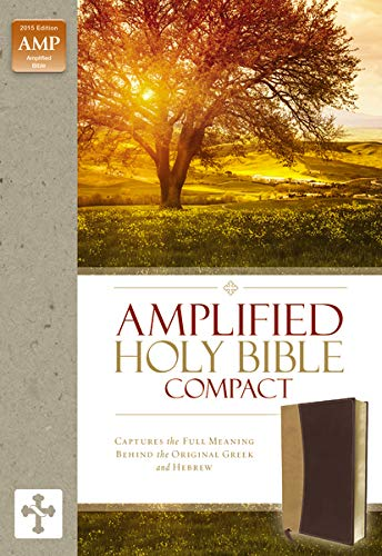 10 best amplified bible with name for 2021