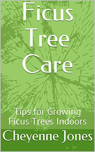 Ficus Tree Care: Tips for Growing  Ficus Trees Indoors (English Edition)