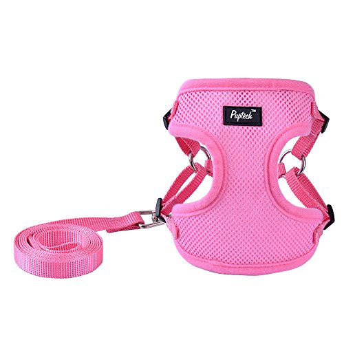 PUPTECK Harness for Small Dogs - Leash Set Adjustable Soft Mesh Pet Vest for Walking Pink