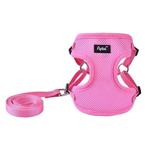 PUPTECK Harness for Small Dogs - Leash Set Adjustable Soft Mesh Pet Vest for Walking Pink