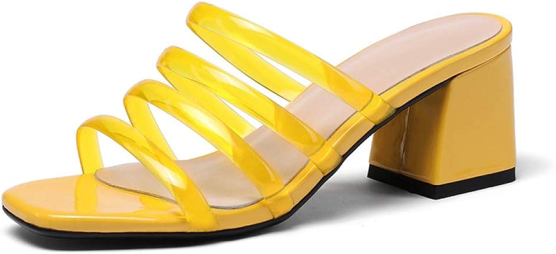 Womens Open Toe Chunky Heels Slide Sandal Clear Strap Slip-On Summer Beach Dress Sandal