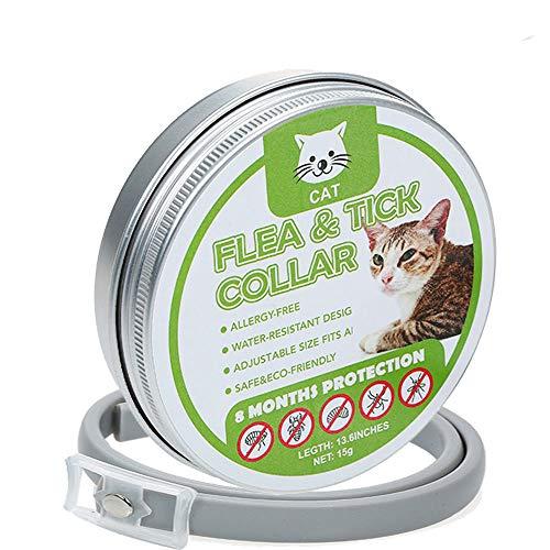 Ritioner Collare Antipulci Gatto,Antiparassitario per Gatto,per Tutti i Gatto,8 Mesi Protezione/Olio Essenziale Naturale Senza allergia/35CM Regolabile