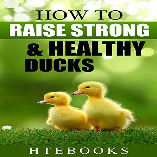 How to Raise Strong & Healthy Ducks: Quick Start Guide audiobook cover art