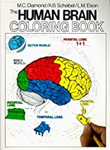 The Human Brain Coloring Book (Coloring Concepts) PDF