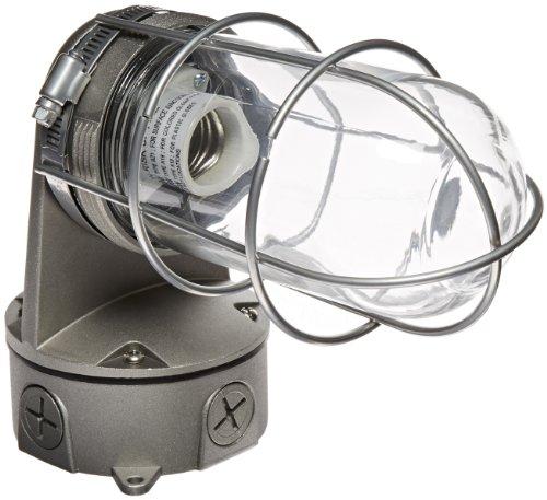"RAB Lighting VXBR200DGB-3/4 Vaporproof VXBR 4"" Wall Bracket with Glass Globe and Cast Guard, A19 Type, Aluminum, 300W Power, 3/4"" Hub, Black"