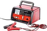 Lescars Autobatterie Ladegerät: Automatisches Profi-Batterieladegerät für 6 V / 12 V, max. 6 A (Batterieladegerät Kfz)