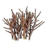 Holibanna ramas de abedul ramitas de abedul naturales centros de mesa artesanales decorativos palos de madera secos accesorios de fotos artísticas 15 cm