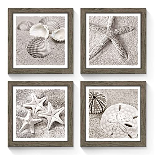SunFlax Framed Beach Gallery Wall Art: Starfish Seashell Conch Collection Pictures Prints Set of 4 Wall Decor for Bedroom (Multi-Style)