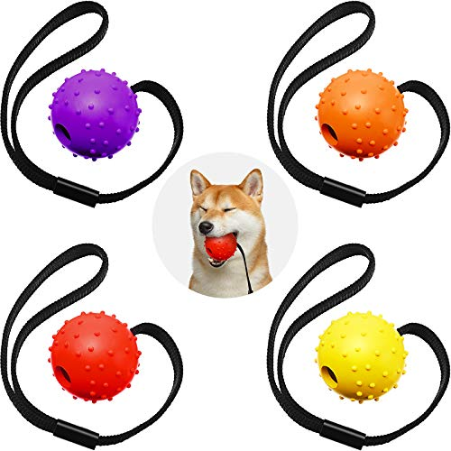 4 Stücke Hunde Ball auf Seil Interaktiver Hunde Training Ball Hunde Spielzeug Ball auf Seil Belohnung Übung Spielzeug für Kleine, Mittel Große Hunde Holen, Fangen, Werfen und Ziehen