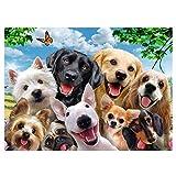 Puzzle Selfie de Perros, Afaneep 1000 Piezas de Rompecabezas Color Perros Puzzles para Adulto y Niños, Juguete de Regalo de Juegos Familiares Interactivos