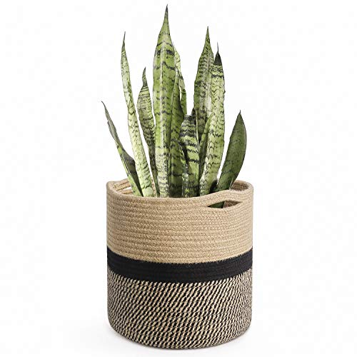 10 best planter basket for 2021