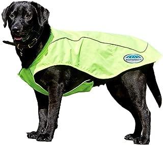 Weatherbeeta New Reflective Exercise Dog Coat