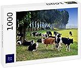 Lais Puzzle Vacas en un Prado 1000 Piezas