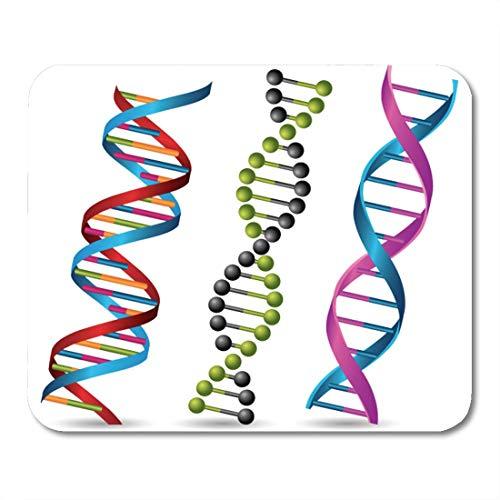 Muismat ladder Helix DNA strengen Gen Genetische Biologie Genomwetenschap leven muismat muismat