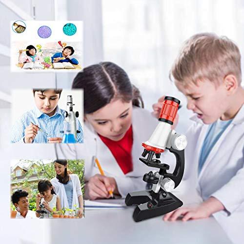 Toysgift Kids Beginner Microscope STEM Kit Early Education Kids 1200X Adjustable Focus Microscope w/Specimen Kit Science Toys Gift for Kids Children Boys Girls Age 5+