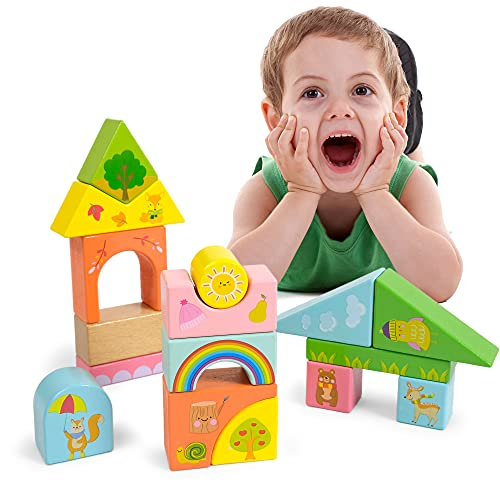 Wooden Blocks for Toddlers 3-6, Building Toys for Kids, Educational Preschool Learning Toy, Stacking Blocks Toys for 3+ Year Old Boys and Girls Baby Gifts RRIBOUDWAN