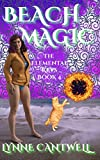 Beach Magic: The Elemental Keys Book 4