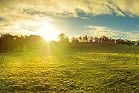 ERZAN1000ピース木製パズル北アイルランドの田園地帯の朝日の出ビュー大人パズル のすべ