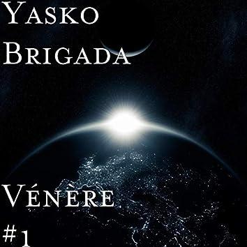 Vénere #1