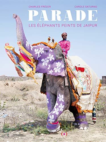 Parade: Les éléphants peints de Jaipur