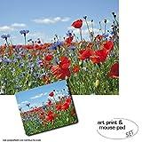 1art1 Blumen, Wildblumen-Wiese Mit Mohn- Und Kornblumen 1
