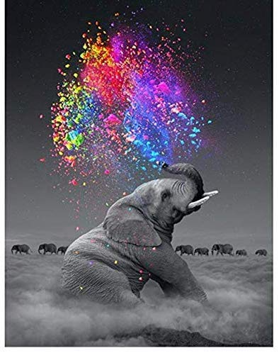 Paint by Number, for Adults and Children Beginners, Canvas Oil Painting kit, 16X20 inches with Brush and Acrylic Paint. (Elephant)