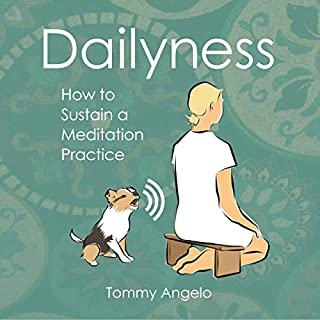 Dailyness audiobook cover art