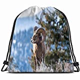 Ram Male Bighorn Sheep Standing on Animals Wildlife Animal Drawstring Backpack Sports Gym Bag for Women Men Children Large Size with Zipper and Water Bottle Mesh Pockets