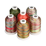 Simthread 6 Colors Polyester Variegated Embroidery Machine Thread 1100 Yards (1000M) for Decoration Babylock Singer Brother Janome Pfaff Husqvarna Embroidery and Sewing Machines - Festival Series