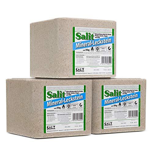 Salit -  Mineralleckstein -