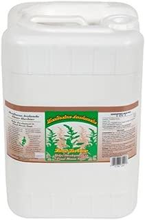 Grow More Mendocino Avalanche 6 Gallon